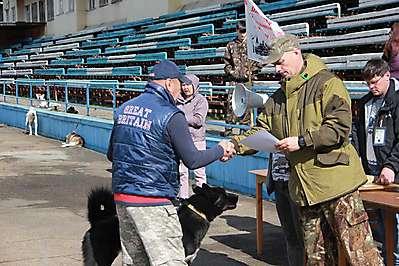 Иркутская районная выставка лаек 20.09.2020
