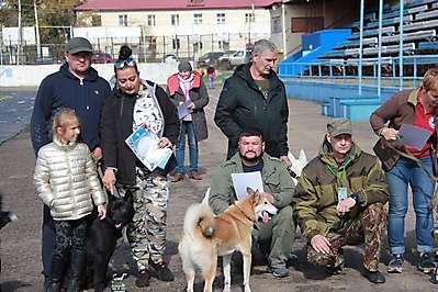 Иркутская районная выставка лаек 20.09.20